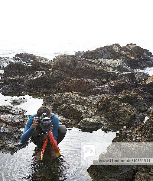 Strand Hispanier fotografieren