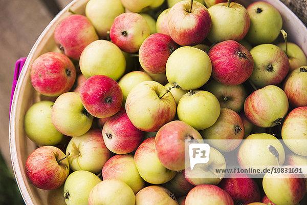 Haufen Close-up Apfel