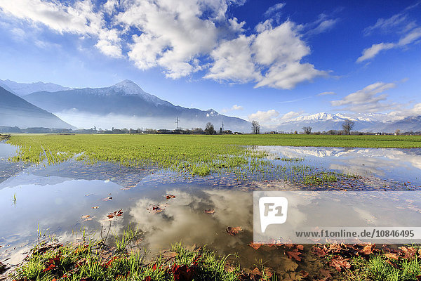 The natural reserve of Pian di Spagna flooded with Mount Legnone reflected in the water  Valtellina  Lombardy  Italy  Europe