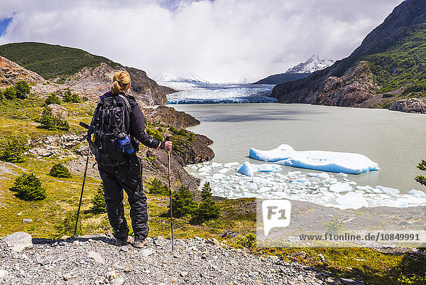 Hiker at Grey Glacier (Glaciar Grey)  Torres del Paine National Park  Patagonia  Chile  South America