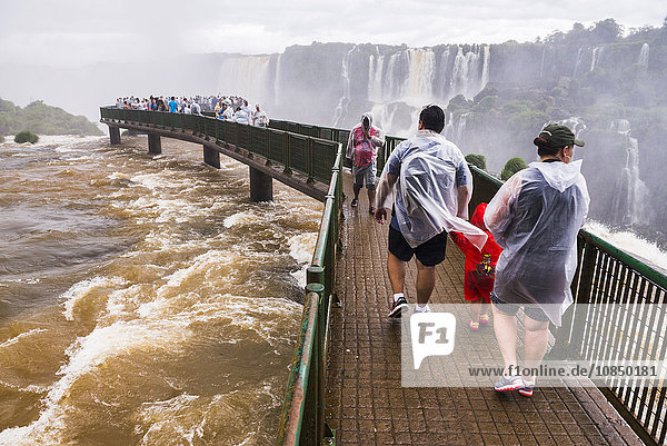 Iguazu Falls (Iguacu Falls) (Cataratas del Iguazu)  UNESCO World Heritage Site  viewing platform on Brazil side  border of Brazil Argentina Paraguay  South America