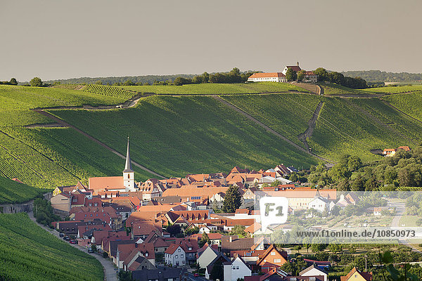 Wine village of Escherndorf and Vogelsburg Castle  Volkacher Mainschleife  Main River  Mainfranken  Lower Franconia  Bavaria  Germany  Europe