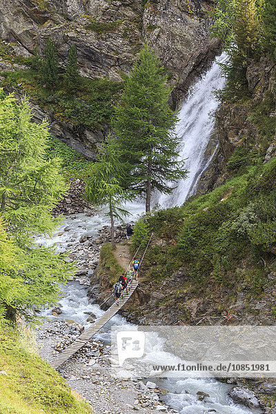 Hikers cross the wooden bridge on a creek in the woods  Minor Valley  High Valtellina  Livigno  Lombardy  Italy  Europe