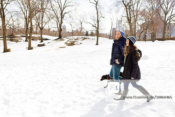 Junges Paar spaziert mit Hund im Schnee herum  Central Park  New York  USA