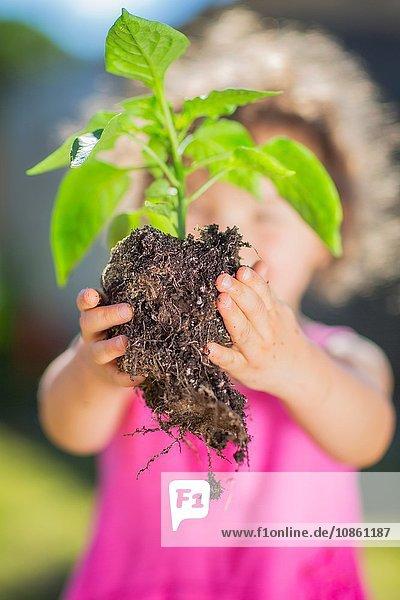 Junges Mädchen im Garten  hält Pflanze  Lesen zum Einpflanzen  Nahaufnahme