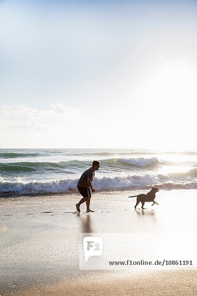 Mid adult man and dog  playing together on beach