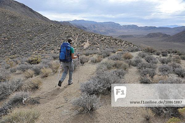 Hiker exploring desert  Cottonwood Canyon  Death Valley National Park  California