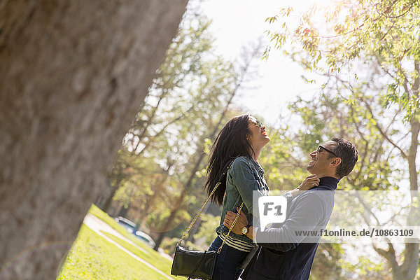 Ein Paar im Park umarmt sich von Angesicht zu Angesicht und lächelt
