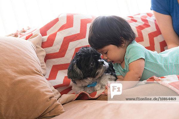 Baby spielt mit Hund auf dem Sofa