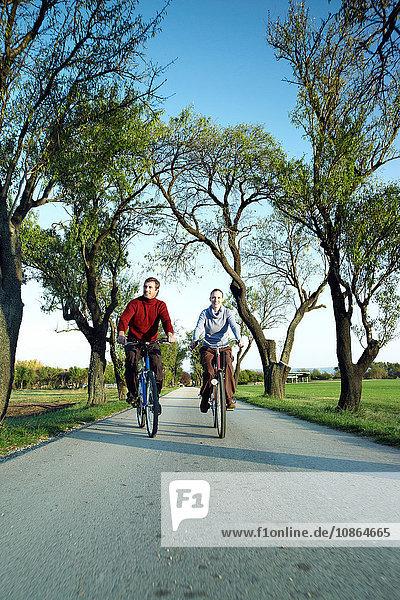 Paar radelt auf einem von Bäumen gesäumten Radweg um den Plattensee  Budapest  Ungarn