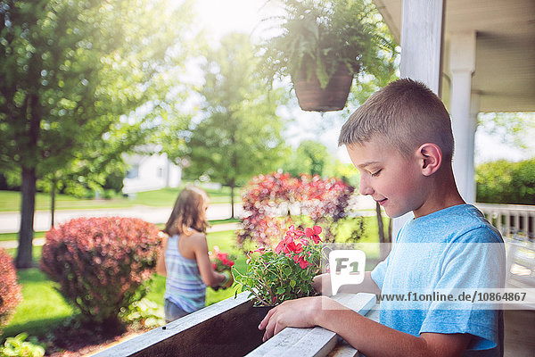 Boy planting flowers in planter box