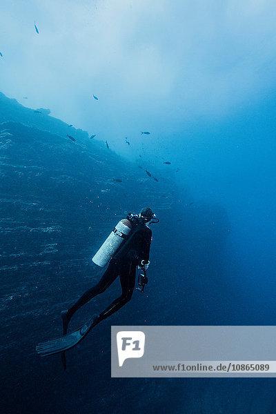 Rückansicht eines Tauchers an einer Unterwasser-Felswand
