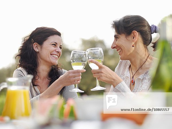Two women toasting with wine glasses