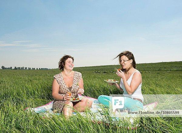 Frauen picknicken auf einer Wiese aus hohem Gras
