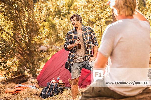 Männliche Camper plaudern und trinken Bier im Wald  Deer Park  Kapstadt  Südafrika