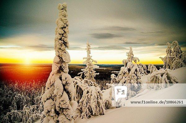 Winterlandschaft bei Sonnenuntergang  Russland