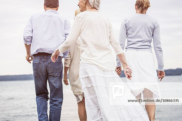 Group of friends  walking towards lake  rear view