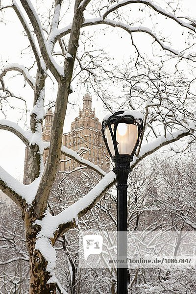 View of The San Remo building,  Winter in Central Park,  Manhattan,  New York City,  USA