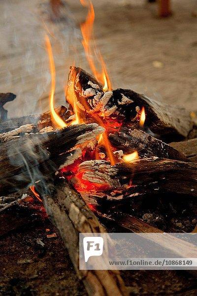 Ein Lagerfeuer im Abu Camp  eine Luxussafari im Okavango-Delta  Botswana