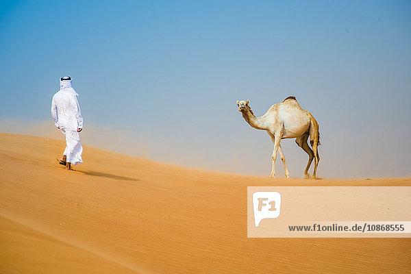 Mann aus dem Nahen Osten in traditioneller Kleidung geht in der Wüste auf ein Kamel zu  Dubai  Vereinigte Arabische Emirate