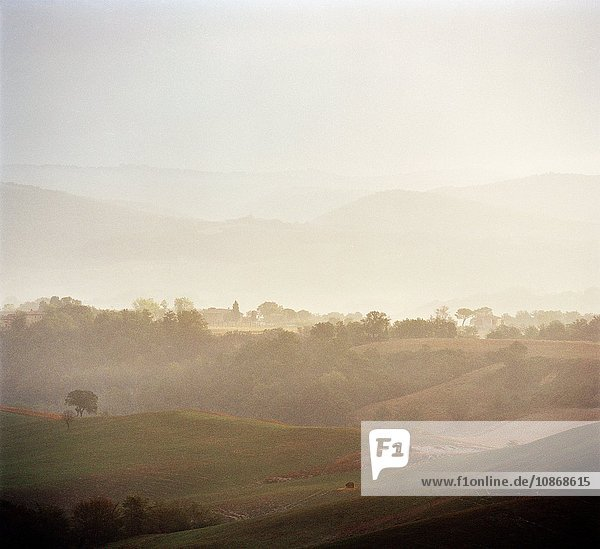 Countryside in the region of Val D'Orcia  Tuscany  Italy