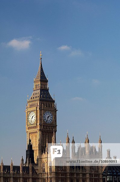 Big Ben and the Houses of Parliament  London  UK