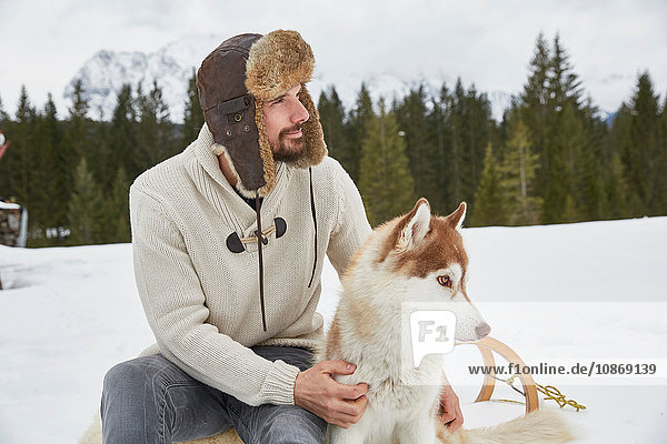 Young man wearing trapper hat petting husky in snow  Elmau  Bavaria  Germany