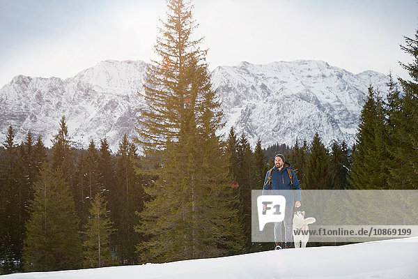 Young man walking uphill with husky in snow covered landscape  Elmau  Bavaria  Germany