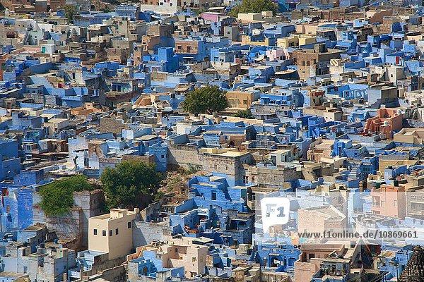 View to the blue Brahman village from Mehrangarh Fort in Jodhpur  Rajasthan  India