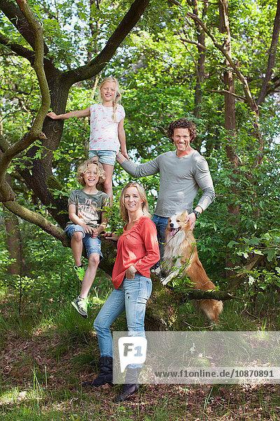 Familie im Waldkletterbaum schaut lächelnd in die Kamera