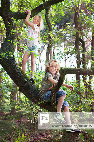 Boy and girl in tree looking at camera smiling