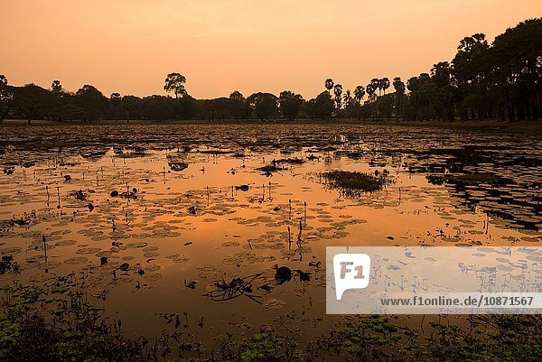 Sunset over Lake  Angkor  Siem Reap  Cambodia  Indochina  Asia