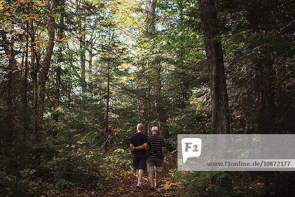 Senior couple walking through forest  rear view