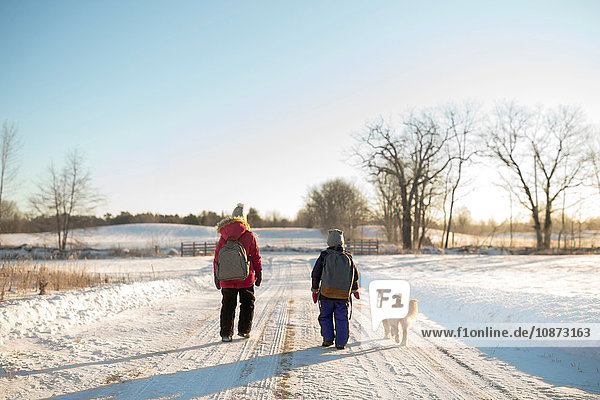Golden retriever and two young sisters carrying school satchels walking on snow covered track  Ontario  Canada