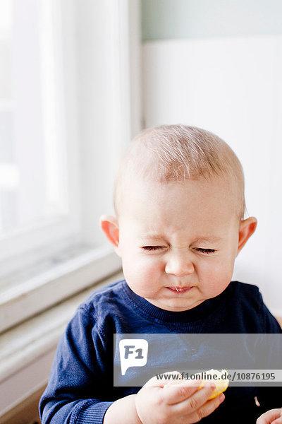 Porträt eines kleinen Jungen  der eine Zitronenscheibe probiert und ein Gesicht zieht Porträt eines kleinen Jungen, der eine Zitronenscheibe probiert und ein Gesicht zieht
