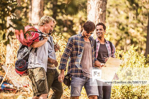 Vier männliche Wanderer wandern mit Karte im Wald  Deer Park  Kapstadt  Südafrika