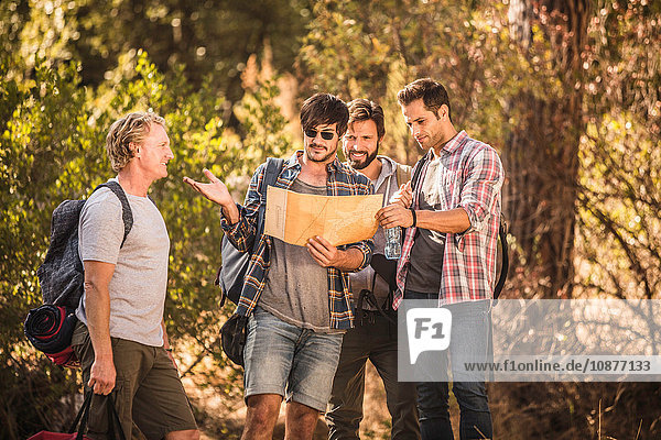 Vier männliche Wanderer beim Kartenlesen im Wald  Deer Park  Kapstadt  Südafrika