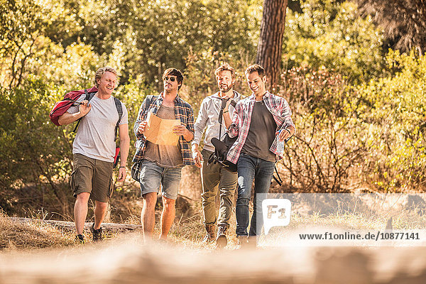 Four male hikers with map on forest hike  Deer Park  Cape Town  South Africa