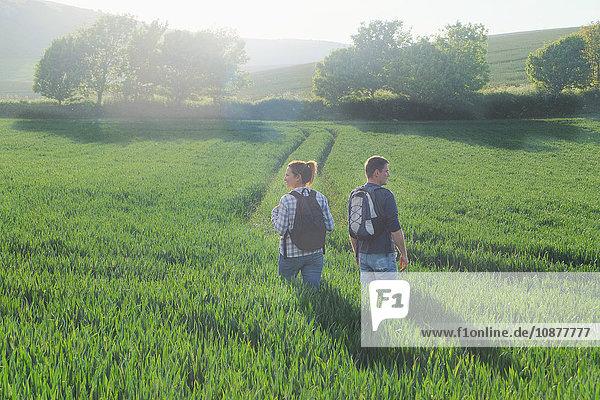 Rückansicht eines im Feld wandernden Paares