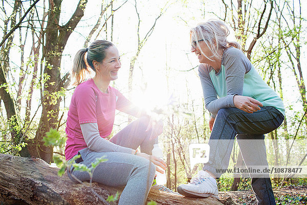 Women in forest sitting on fallen tree face to face smiling