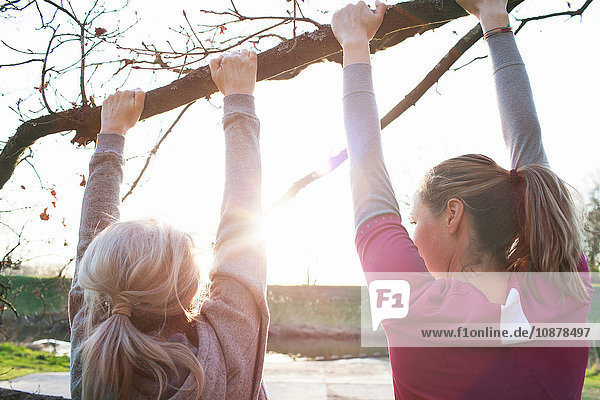 Rear view of women doing chin ups on tree branch