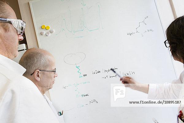 Schweden  Wissenschaftler schreiben chemische Formeln auf Whiteboard