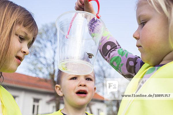 Schweden  Vastergotland  Olofstorp  Bergum  Kindergartenkinder (2-3  4-5) beim Lernen im Freien
