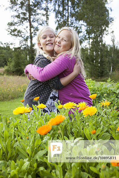 Schweden  Medelpad  Zwei Mädchen (10-11  12-13) in gelben Blumen stehend und umarmend