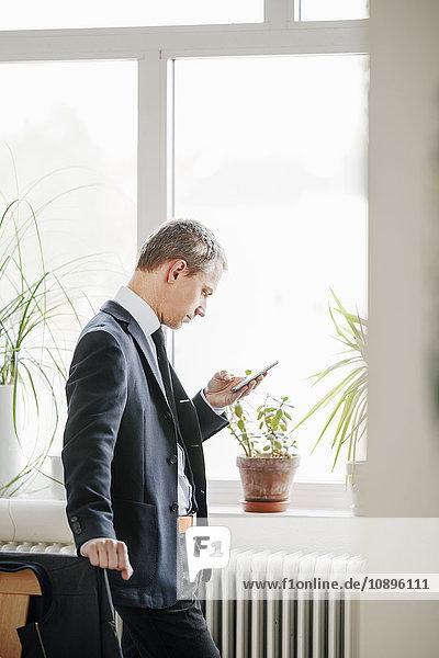 Schweden  Mittlerer Erwachsener Mann mit Smartphone