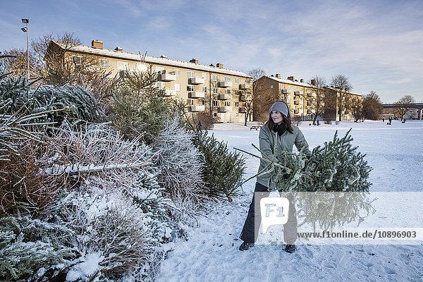 Schweden  Sodermanland  Johanneshov  Nytorps Garde  Junge Frau schmeißt alten Weihnachtsbaum raus