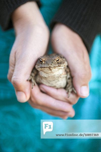 Schweden  Smaland  Hasselo  Frau hält Frosch in Händen