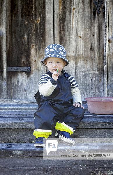 Schweden  Harjedalen  Ytterberg  Boy (2-3) mit Zahnbürste im Mund