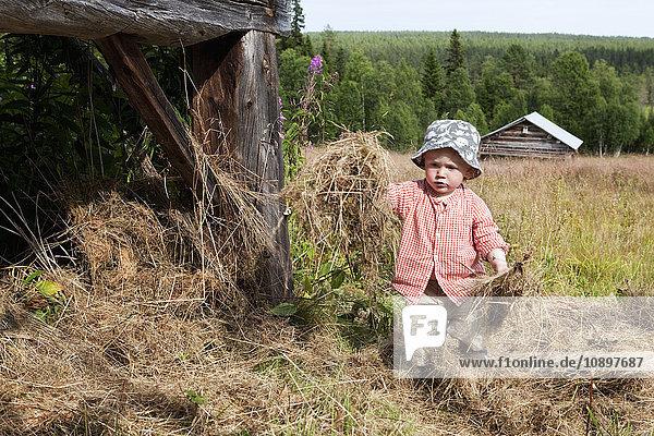 Schweden  Harjedalen  Ytterberg  Junge (2-3) beim Heu sammeln