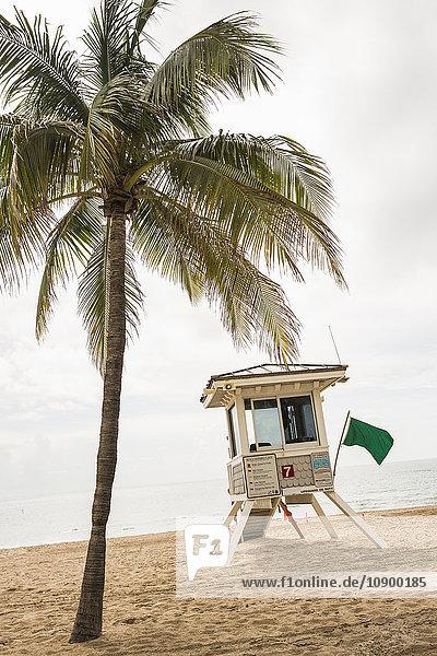 USA  Florida  Lifeguard hut on beach next to palm tree
